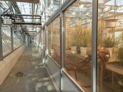 Grrowth-facilities22